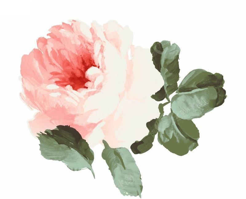 韩国手绘牡丹花psd素材图