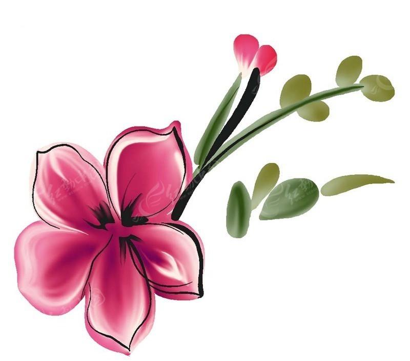PS水墨花朵