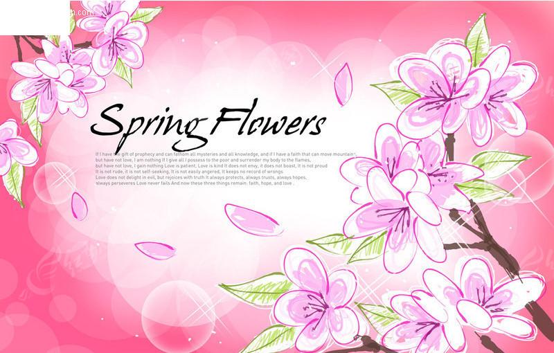 飘落花瓣 梦幻泡泡; 手绘粉红花朵; 手绘梅花 梅花盛开 飘落花瓣 梦幻