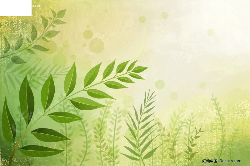 彩绘树枝绿叶背景图片