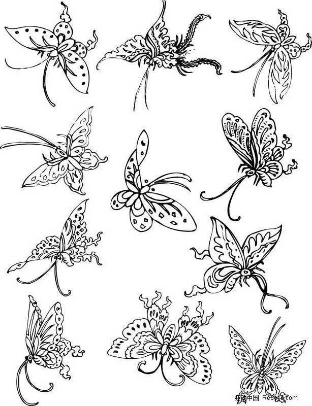手绘黑白画线蝴蝶