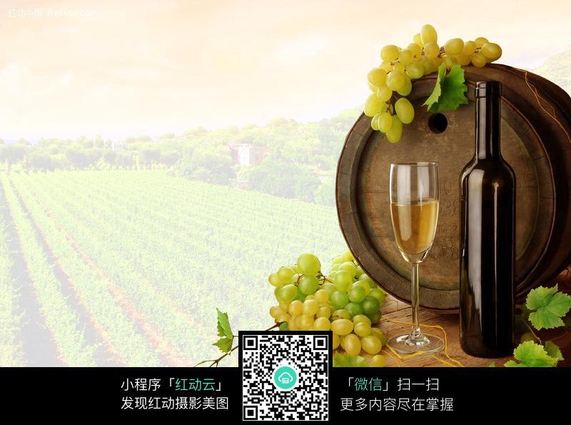 酒桶酒杯葡萄酒素材图片