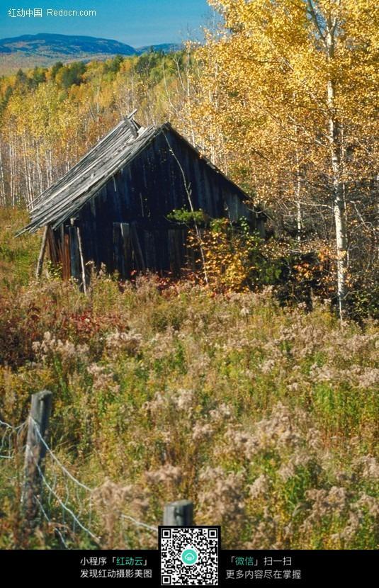 免费素材 图片素材 自然风光 自然风景 林中的小木屋  请您分享: 红动