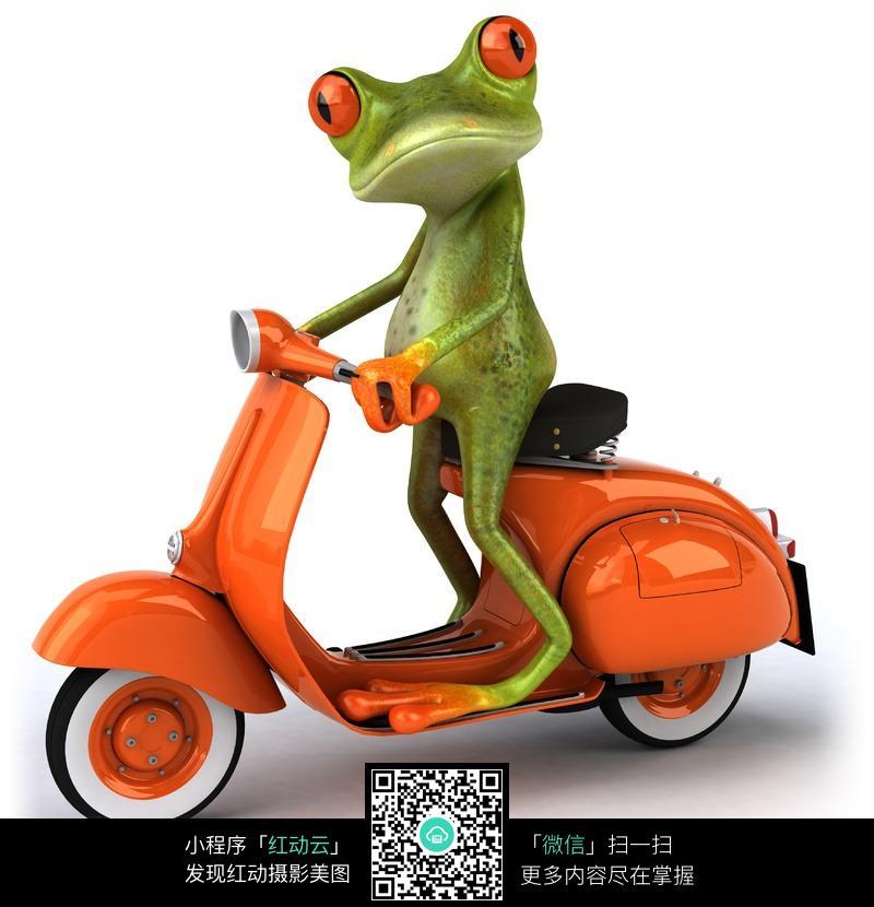 骑摩托车的卡通青蛙图片