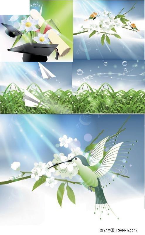 大自然光线与植物矢量素材