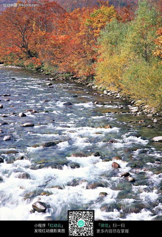 美丽的河边风景