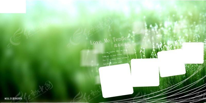 绿色背景中的多个方格摄影模板