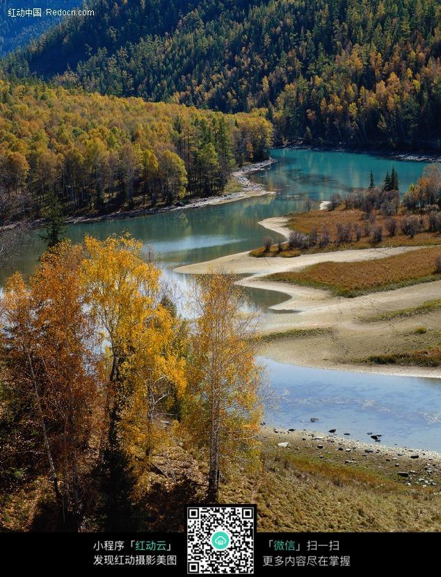 河流 树林 森林 风景图片 摄影图片  自然风光