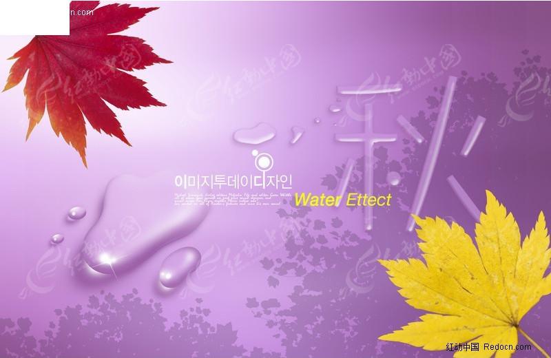 枫叶水滴海报图片
