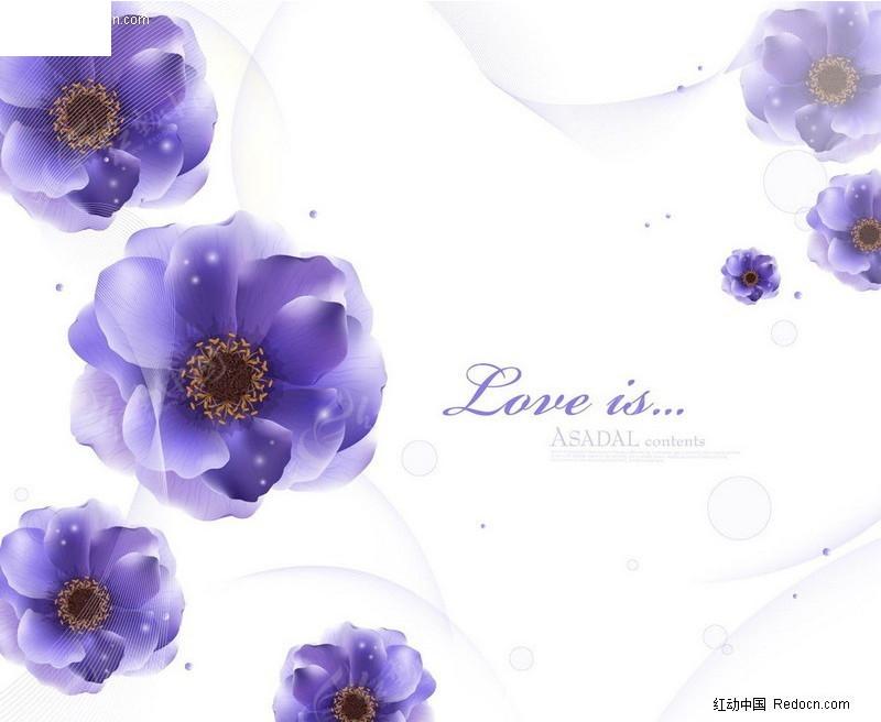 紫色花卉背景素材