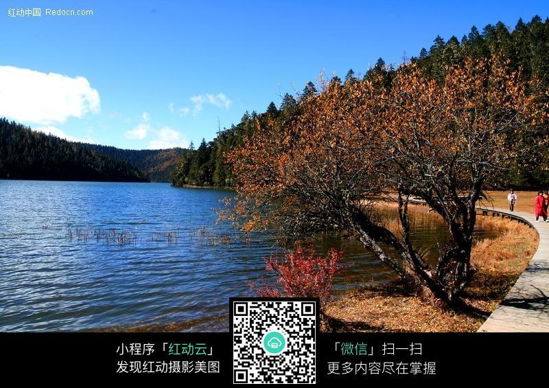 山林中的湖水图片
