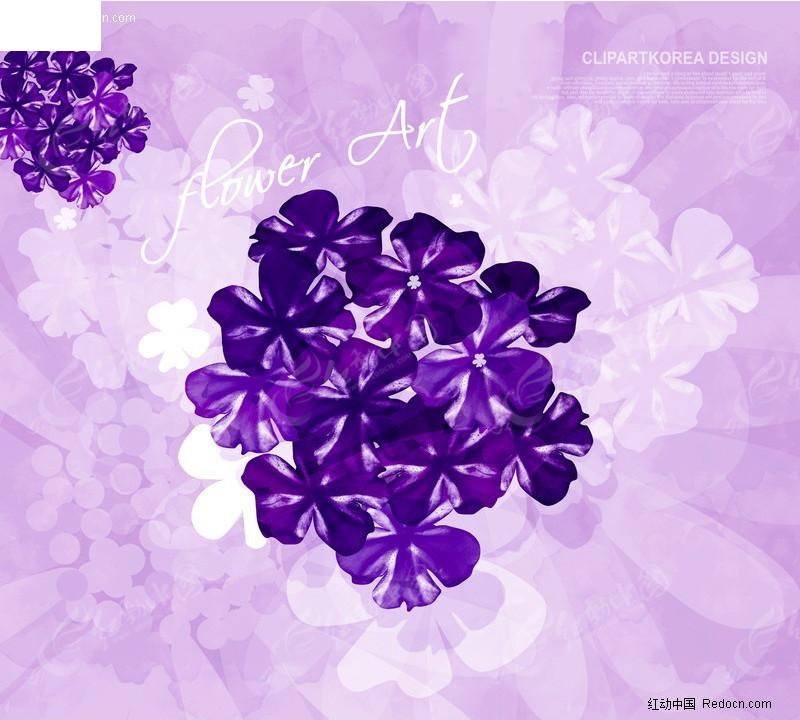紫色小花背景图