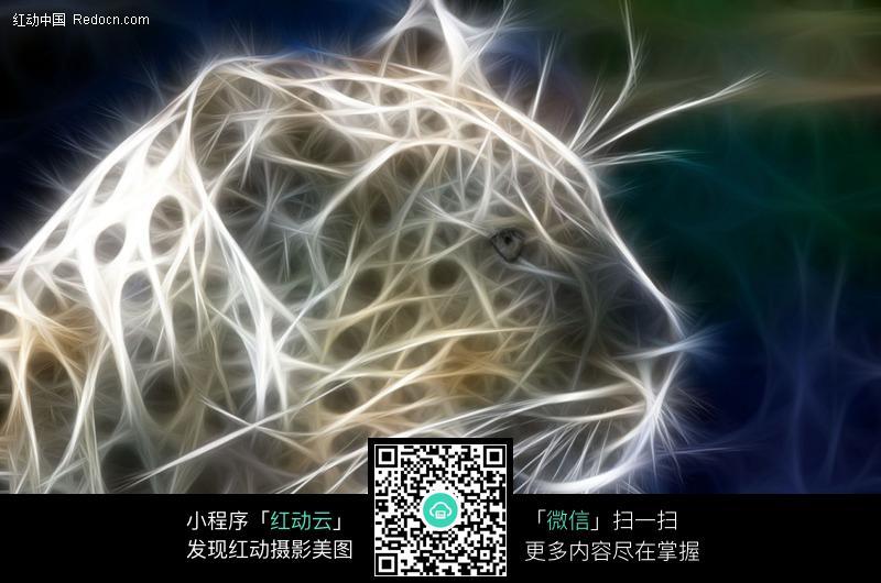 发光处理的豹子图片