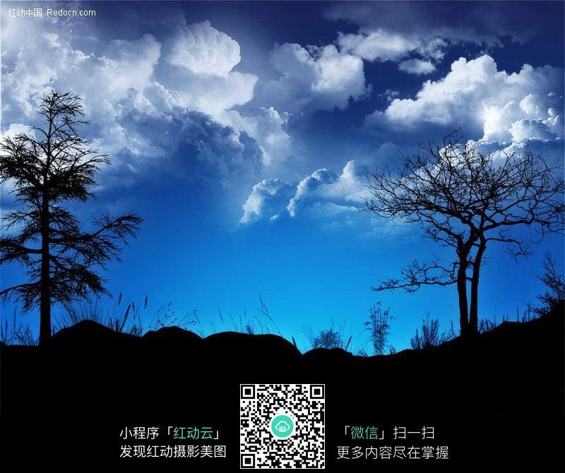 蓝天白云下的树木剪影_自然风景图片