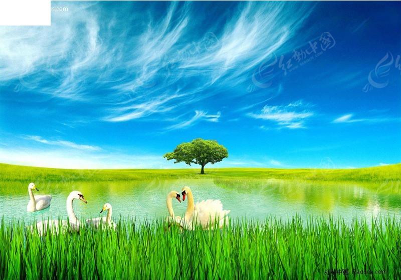 免费素材 psd素材 psd分层素材 风景 大草原中的天鹅湖风光图  请您