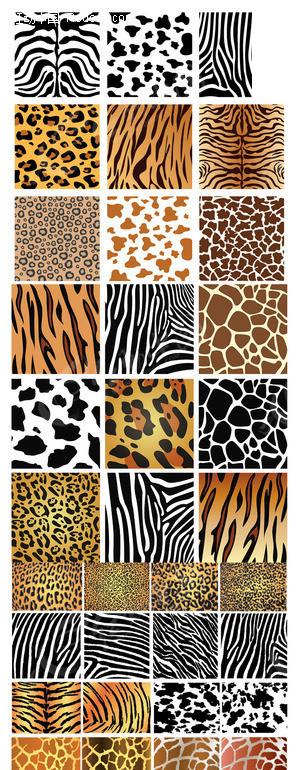 免费素材 矢量素材 花纹边框 底纹背景 动物纹理皮肤背景矢量素材