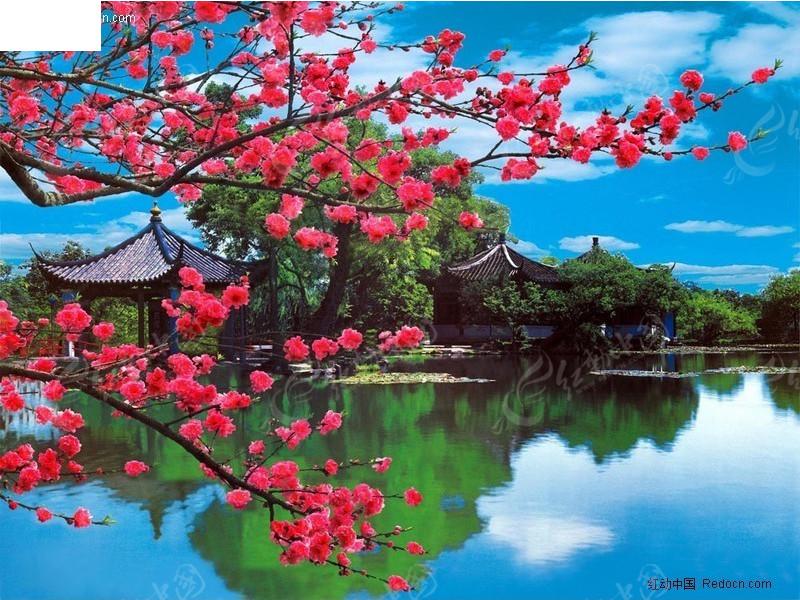 桃花湖畔风景图片psd素材免费下载_红动网图片