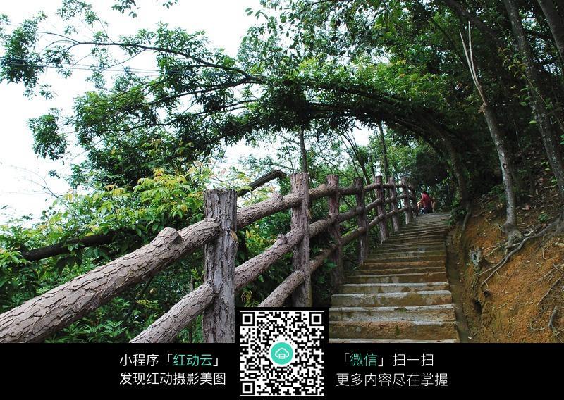 山坡小道图片_园林景观图片