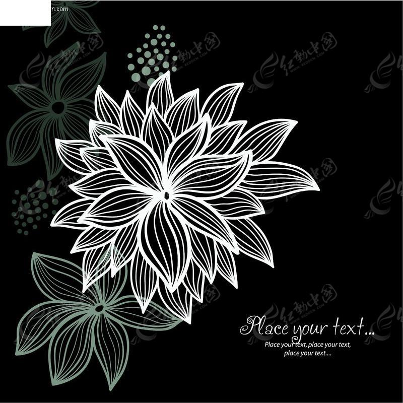 黑白花纹素描