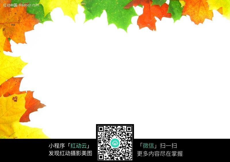 彩色秋叶边框素材图片