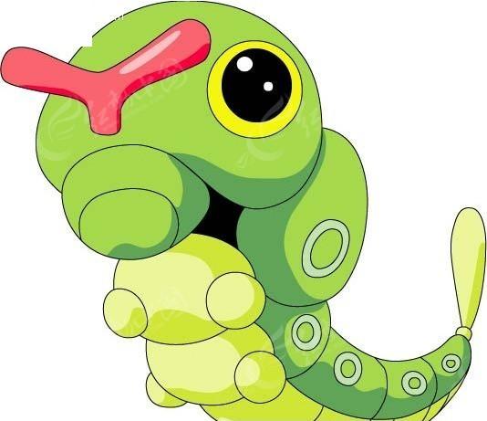 神奇宝贝-绿毛虫