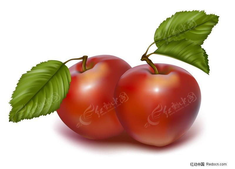ps西红柿素材; 关键字搜索; ps用水果做动物造型;