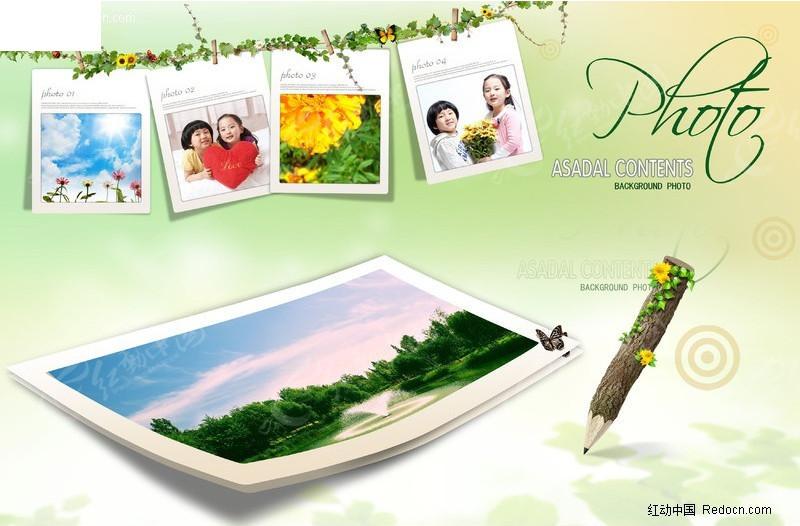 绿藤上的相片图片素材