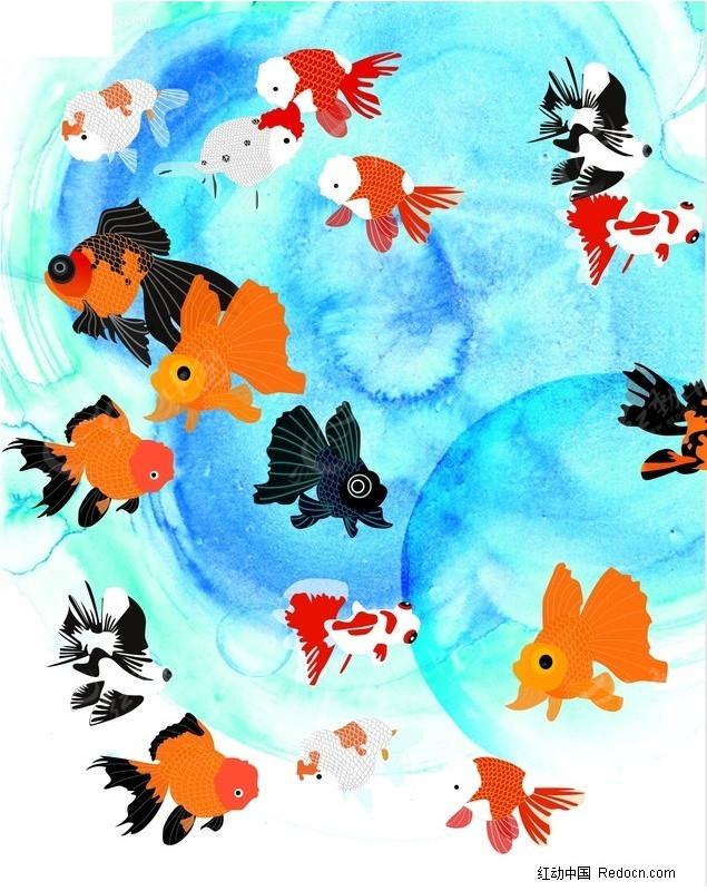 免费素材 矢量素材 生物世界 水中动物 金鱼素材  请您分享: 红动网