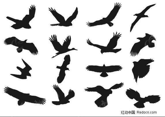 免费素材 矢量素材 生物世界 空中动物 > cdr格式精细飞鸟剪影矢量