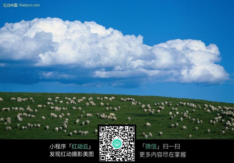 免费素材 图片素材 自然风光 自然风景 蓝天草地羊群  请您分享: 红动