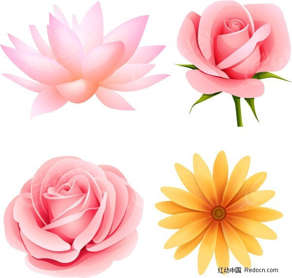 免费素材 矢量素材 生物世界 花草树木 荷花 玫瑰花  请您分享: 素材