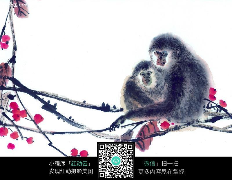 水墨画猴子绘制步骤