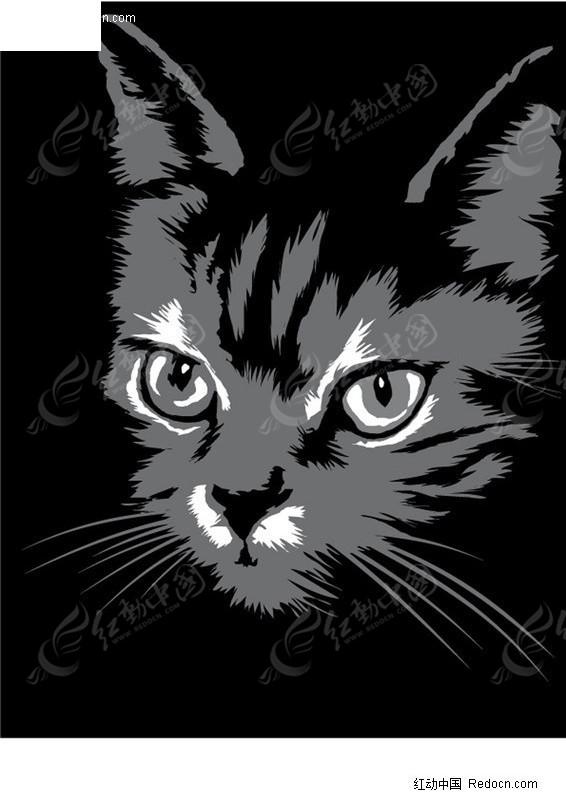 卡通猫咪黑白画