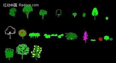 植物立面素材_cad图库