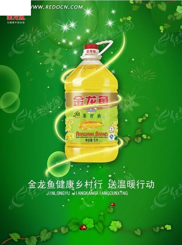 金龙鱼菜籽油宣传海报