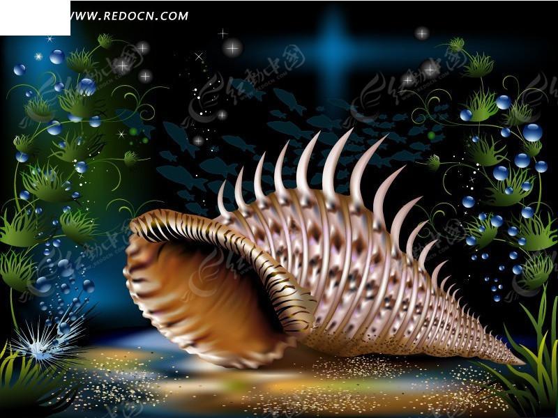 海洋 海底  生物 海藻 海螺 动物 动物图片 矢量素材