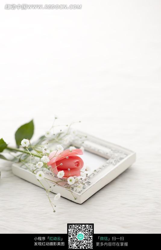免费素材 图片素材 人物图片 儿童幼儿 满天星玫瑰花  请您分享: 红动