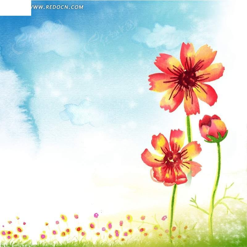 蓝天白云下的花朵