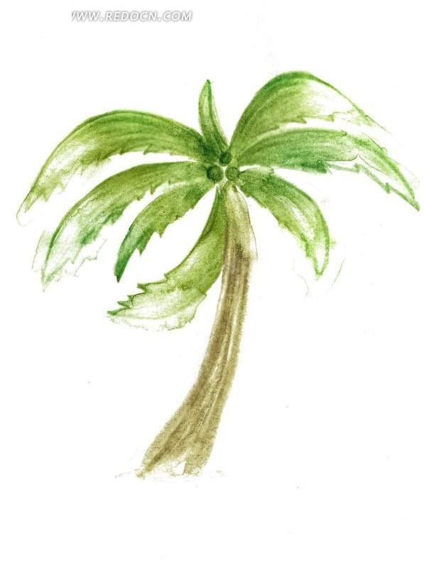 手绘椰树水彩画
