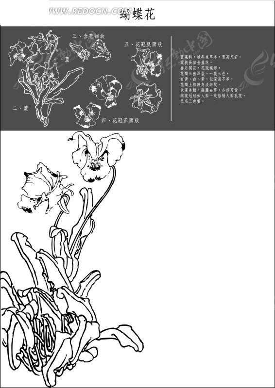 手绘面具图片全脸花朵