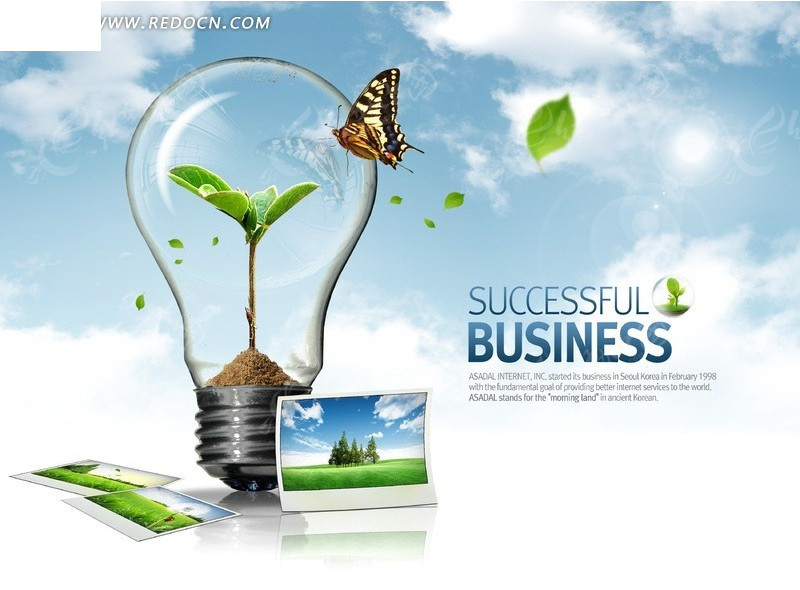 创意节能环保灯泡和蝴蝶绿叶照片图片