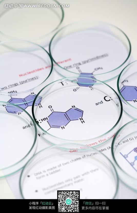 化学实验器材玻璃皿