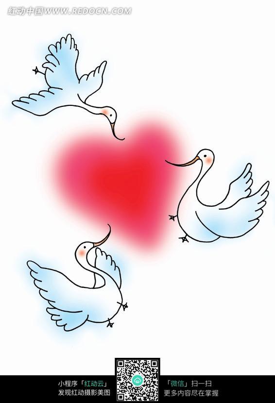 手绘叼着红心的白天鹅图片