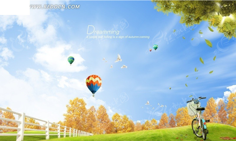 蓝色天空下的草地单车风景
