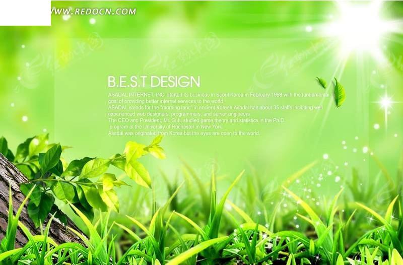 绿叶 树杆 小草 叶子 阳光 太阳 自然 风景 高清 绿色 清新 浪漫 梦幻