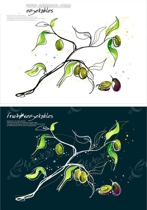 精美手绘水果插画设计