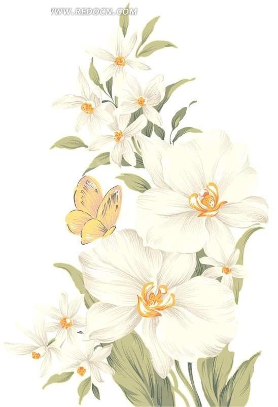 手绘 白色水仙花 黄色 蝴蝶 psd素材 花卉psd素材 分层素材 白色背景