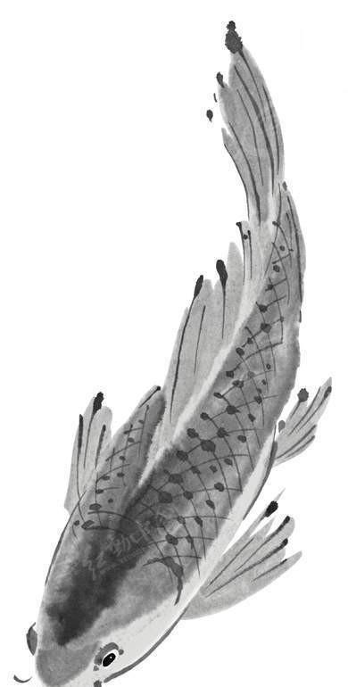 游动的鱼黑白水墨画图片