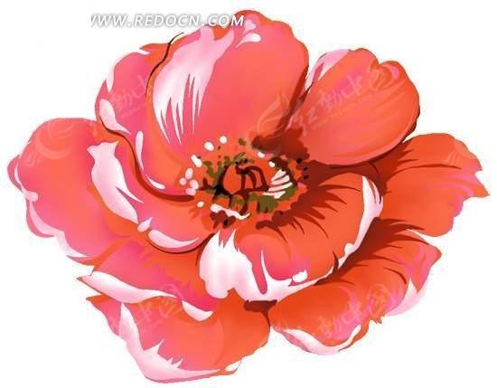 手绘红色牡丹花