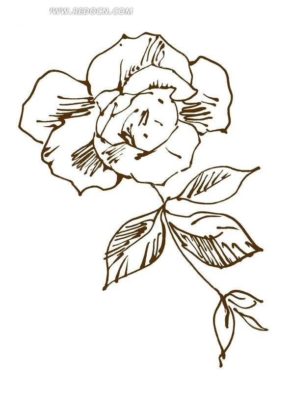 简笔画-手绘线性图案花与叶子 花纹psd 花边psd分层素材下载 591825
